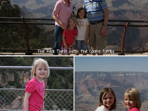 2 Arizona Canyons (The Grand Canyon & Walnut Canyon)