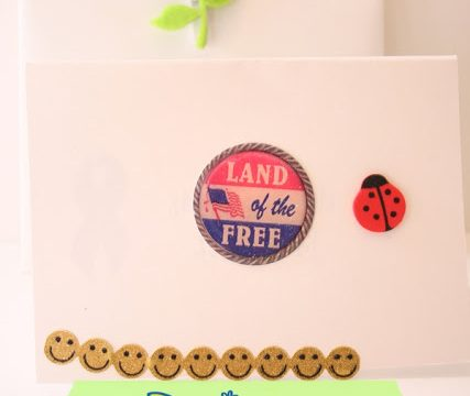 Letters for the Military {Daisy Petals}