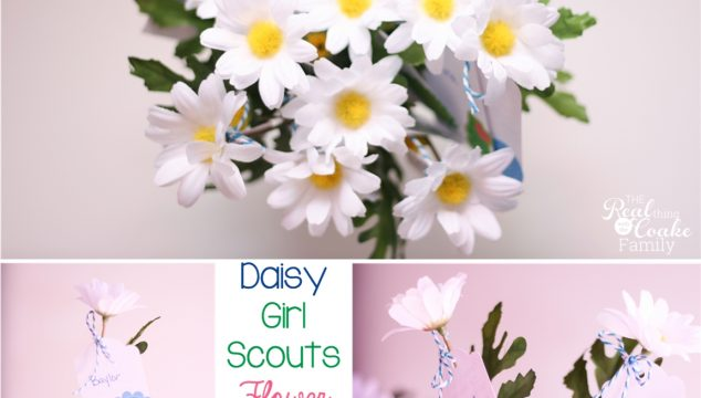 Daisy Girl Scouts ~ Flower Garden Journey Celebration