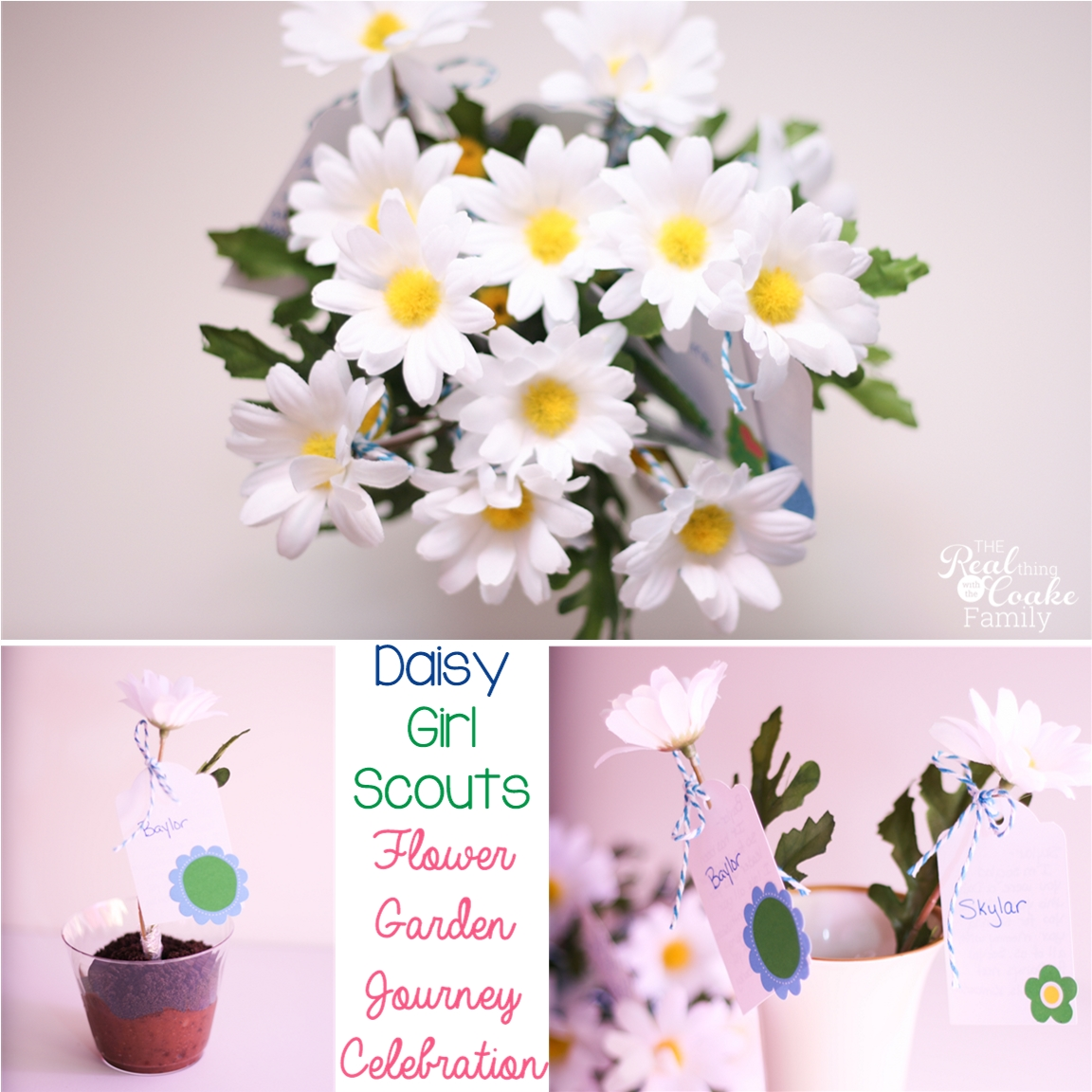 Daisy girl scouts flower garden journey celebration daisy girl scouts ideas for the flower garden journey celebration cute and simple ideas to izmirmasajfo