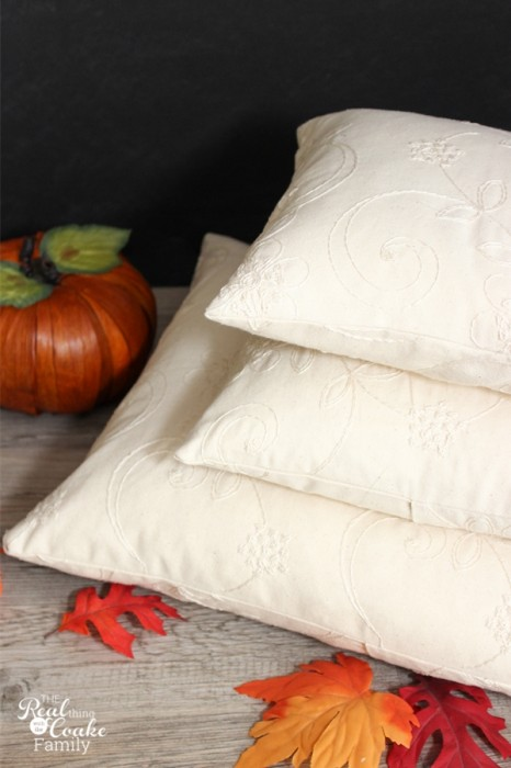 Easy to make and pretty fall decorative pillows. #homedecor #diy #fall #falldecor #livingroom #realcoake