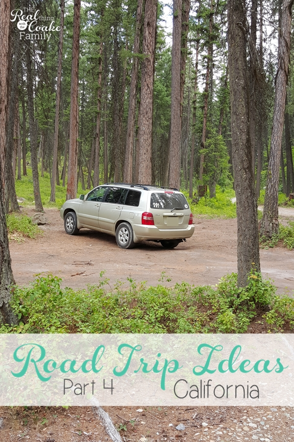 Our 2015 Family Road Trip Week 4