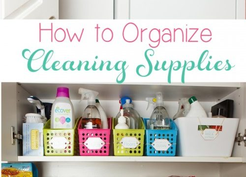 Real Organized Cleaning Supplies
