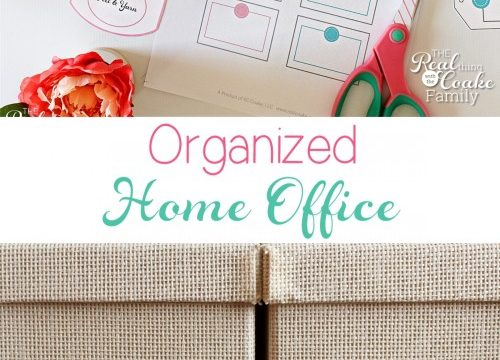 Real Organized Office
