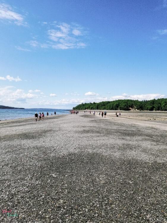 Sand bar at low tide at Acadia national park