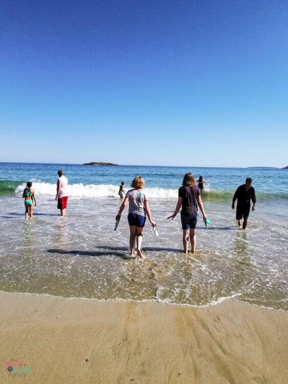 people in water at Sand Beach in Acadia National Park
