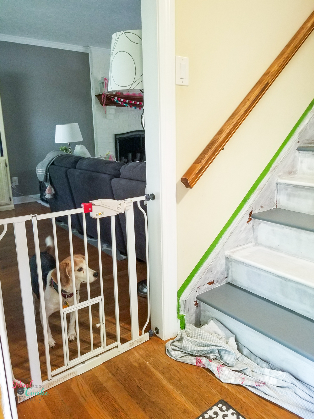 blocking dog from wet paint on stairs